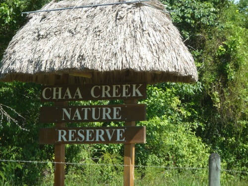 chaa creek lodge