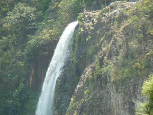"The top of the so-called ""Thousand Foot Waterfall""--actually 1,600 feet--in the Mountain Pine Ridge Forest Reserve.."