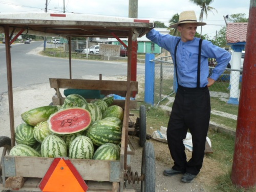 The Mennonites' melons are a big seller this time of year.