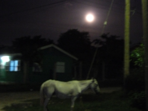Moon near the village of Silk Grass, Belize