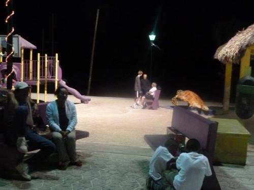 Night at San Pedro, Ambergris Caye, BZ