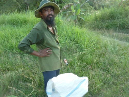 Another bush farmer ...