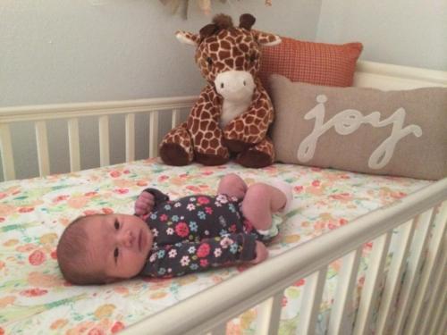 """A Star Is Born"": Logan Joy Bidelman, b. Dec. 4"