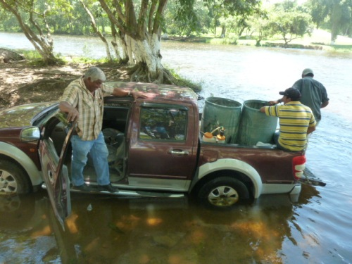 Great truck; runs on Mopan Riiver water.