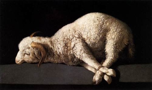 "Agnus Zurbaran's ""Lamb of God""'"
