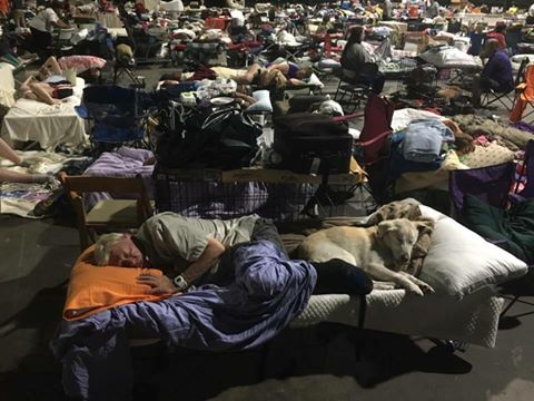 The scene at a shelter in Louisiana, where people have a real disaster to cope with.