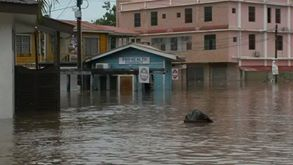 Downtown San Ignacio, less than a mile from my house in Belize, a few hours after the town's usually lazy and scenic Macal River spilled out of its banks far and wide. Belize City, which suffered enormous damaged from Hurricane Earl's landfall 70 miles downstream from us, will suffer enormous flooding for days as this water makes its way downstream to the Caribbean city.