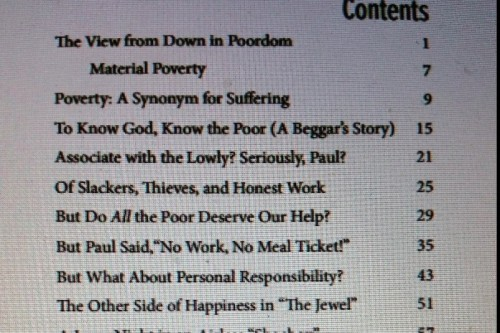 A partial look at the chapters in my book, The View from Down in Poordom: Reflecitons on Scriptures Addressing Poverty.