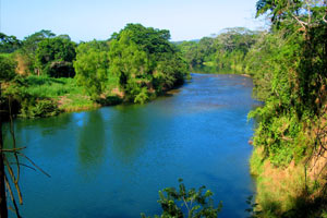 Why I live where I live in Cayo, BZ: One reason is because the lazy Macal River runs through it, and merges with the mighty Mopan River on the outskirts of town. I love rivers.