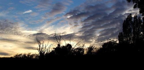 sunset96161